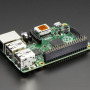 GPIO Header for Raspberry Pi B+ - 2x20 Female Header