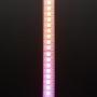 Adafruit DotStar Digital LED Strip - White 144 LED/m - One Meter - WHITE