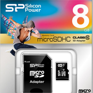 SP008GBSTH010V10SP