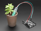Adafruit STEMMA Soil Sensor - I2C Capacitive Moisture Sensor4026-01