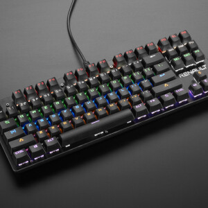 Keyboard with Blue-type Mechanical Switches and LED Backlights - 87-Key