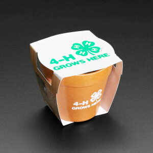 4-H Grow Your Own Clovers Kit