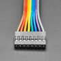 """2.54mm 0.1"""" Pitch 8-pin Jumper Cable - 20cm long"""
