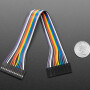 """2.54mm 0.1"""" Pitch 14-pin Jumper Cable - 20cm long"""
