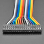 """2.54mm 0.1"""" Pitch 18-pin Jumper Cable - 20cm long"""